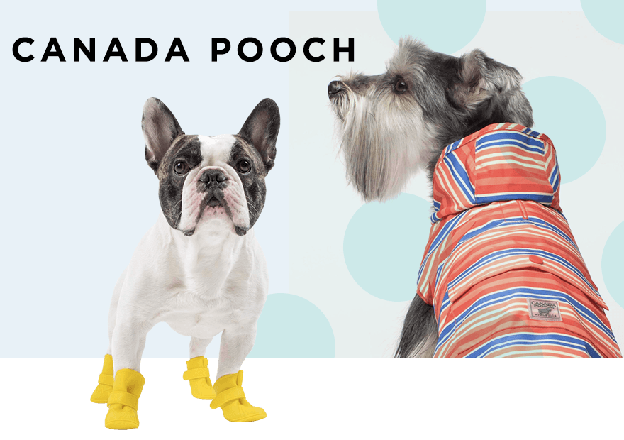 CANADA POOCH カナダプーチ