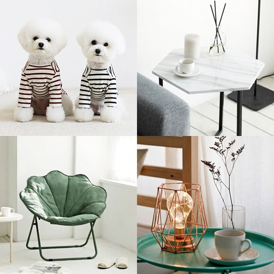 roomnhome collection
